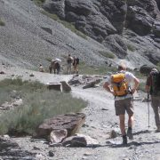 Markha Valley Trek - 8days
